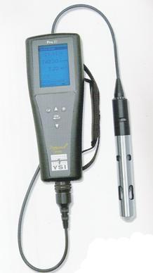 溶解氧测量仪YSI Pro20
